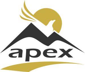 Logo Apex